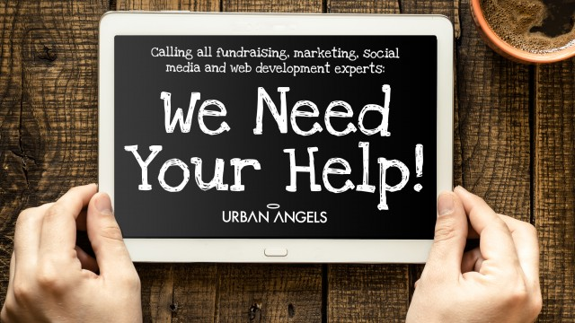 urban-angels-need-help